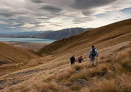 New Zealand Travel Offer