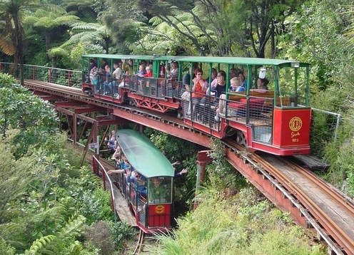The Driving Creek Railway is a narrow gauge mountain railway on the outskirts of the provincial town of Coromandel on the northwestern coast of the Coromandel Peninsula on New Zealand's North Island. It offers magnificent views, superb engineering and unique art features in a replanted forest setting.