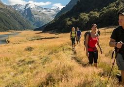New Zealand Travel Offer